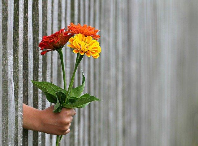 jakie kwiaty na randkę